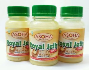 Royal Jelly Asli Murni
